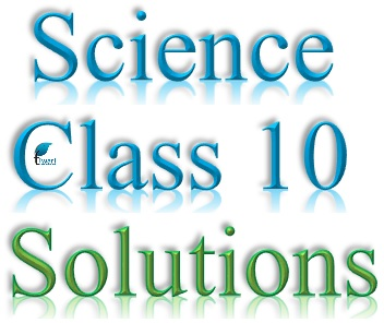 NCERT Solutions for Class 10 Science - 2018 - 2019 - Download in PDF