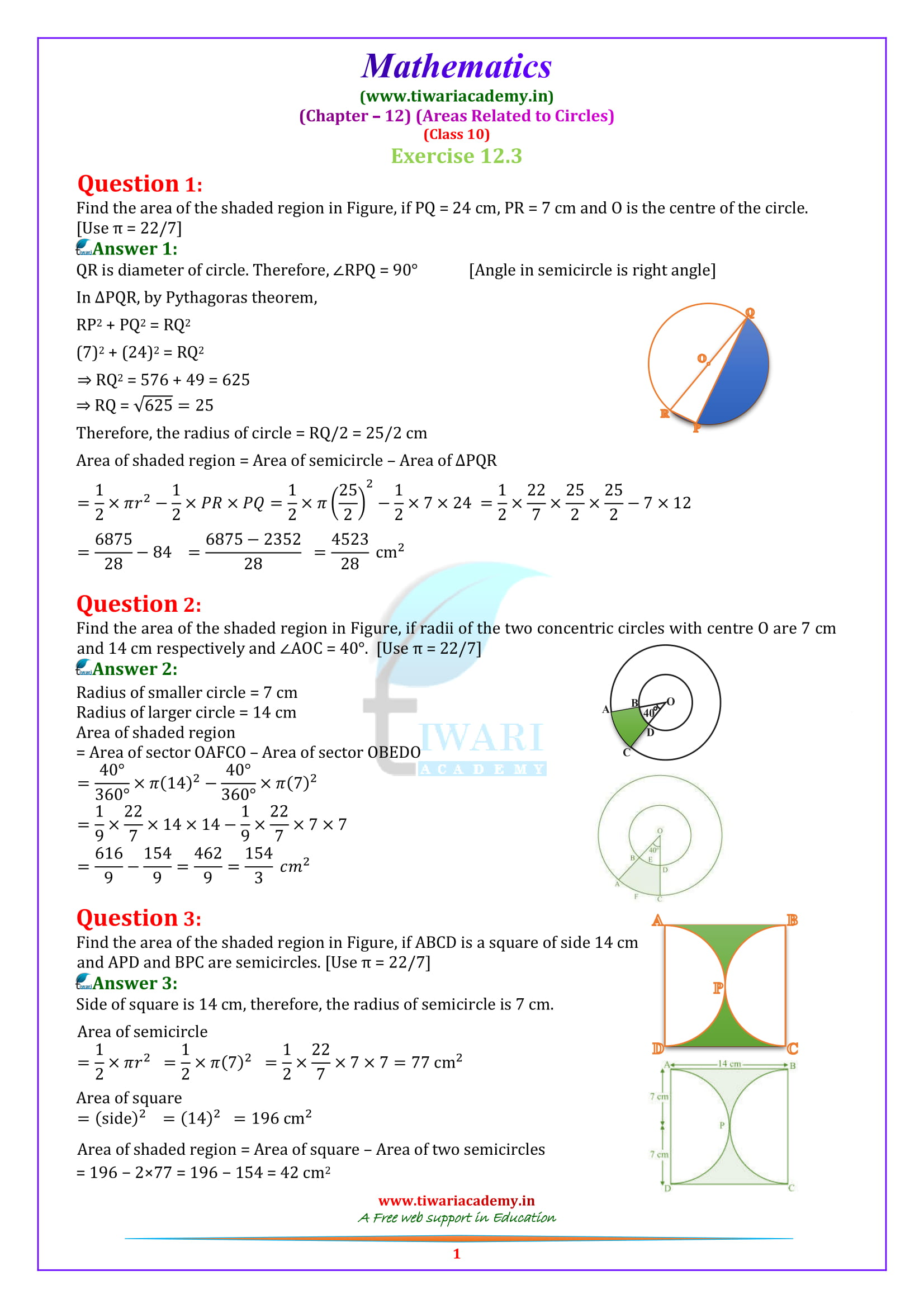 NCERT Solutions for class 10 Maths exercise 12.3 in english medium